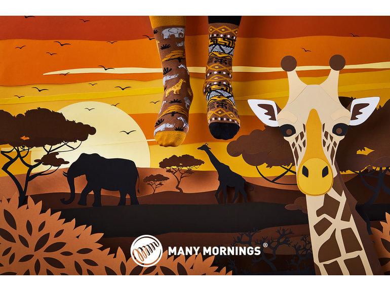 Many Mornings Safari Trip by Many Mornings