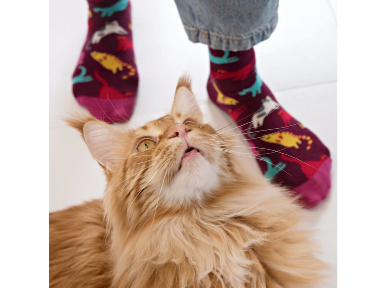 Banana Socks Meow by Banana Socks