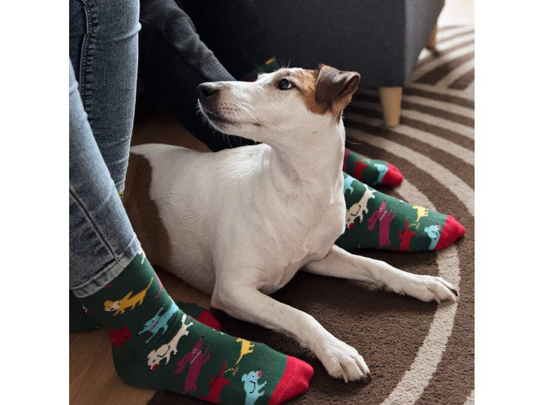 Banana Socks Doggo by Banana Socks