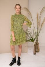 Dress Delphine - Pistachio green/black