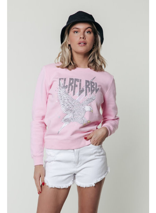 Sweater - Clrfl Rbl Eagle Basic / Pink