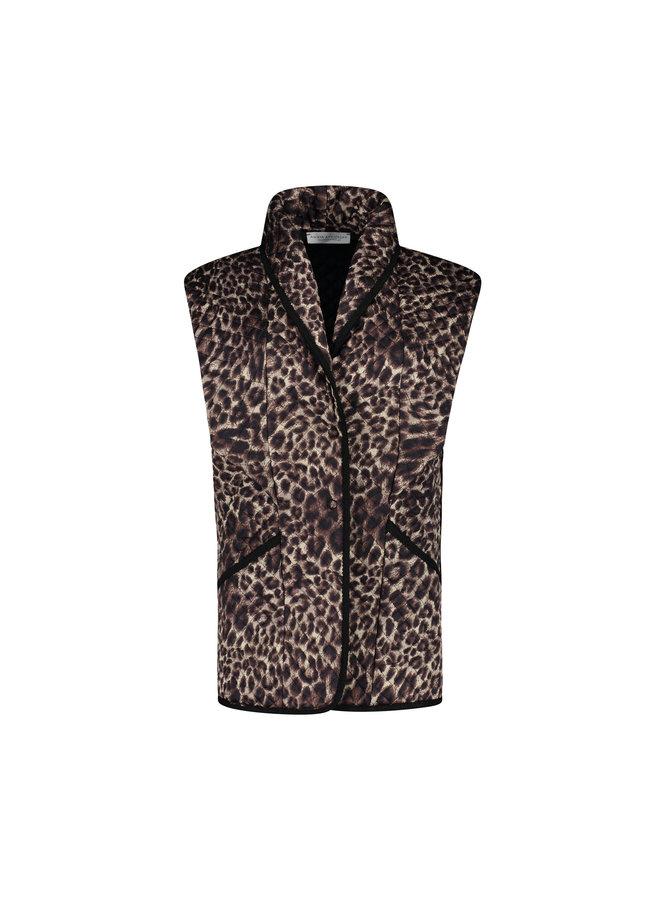 Ginger - Leopard