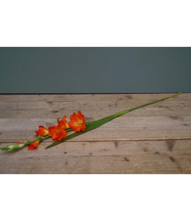# Gladiolus Spray - Gladiool - kunst