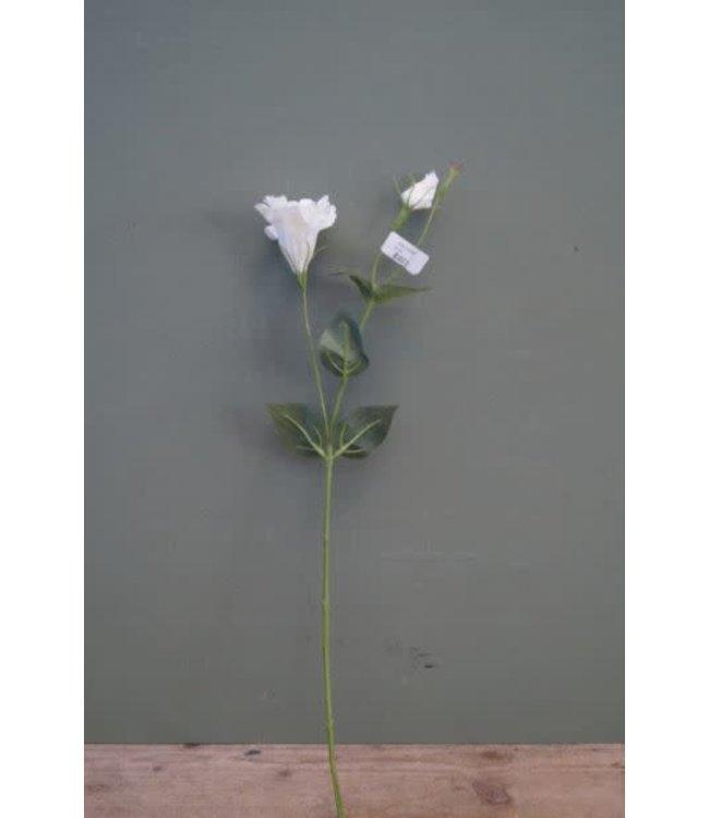 # B254 - Eusthoma Spray - 60 cm