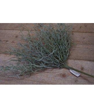 *Z112 - wild twig branch  - 40 x 20 x 10 cm