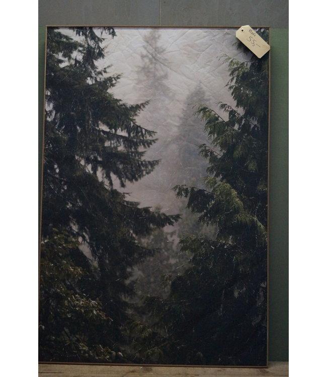 # B762 - muse bomen perk. in lijst 81 x 121