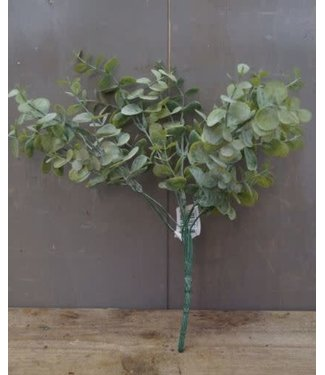 *Q359 - Eucalyptus struik - 30 x 24 x 19 cm - groen