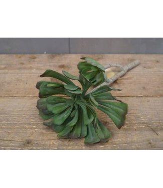 *C057 - Succulent Branch 30cm