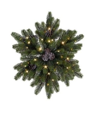 Chippewa ster denappel buiten - 50cm - 50lamp - groen - warm wit