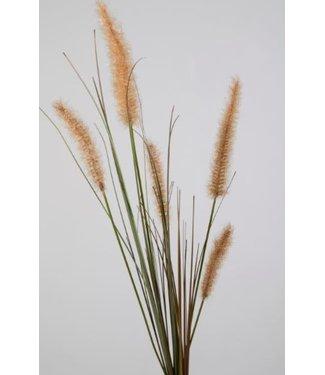 *i275 - dogtail grass stem - 88 x 21 x 5 cm