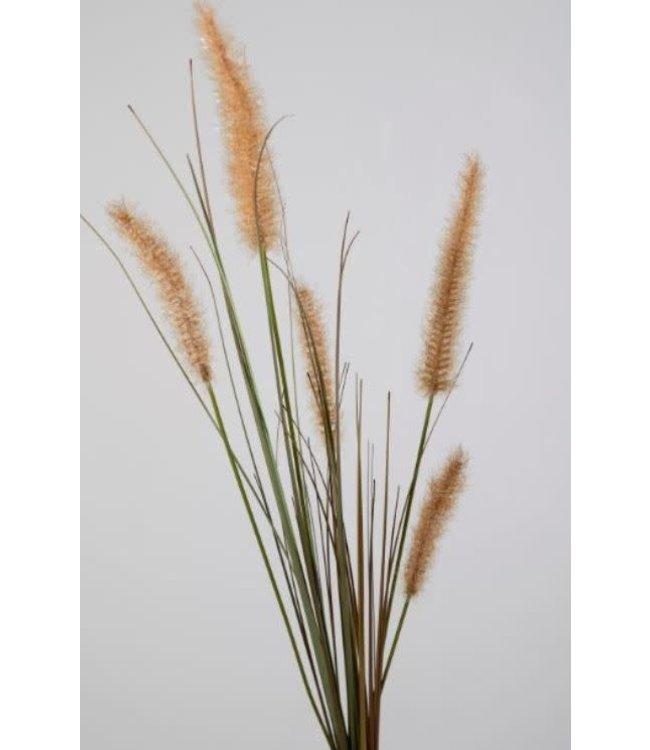 # i275 - dogtail grass stem - 88 x 21 x 5 cm