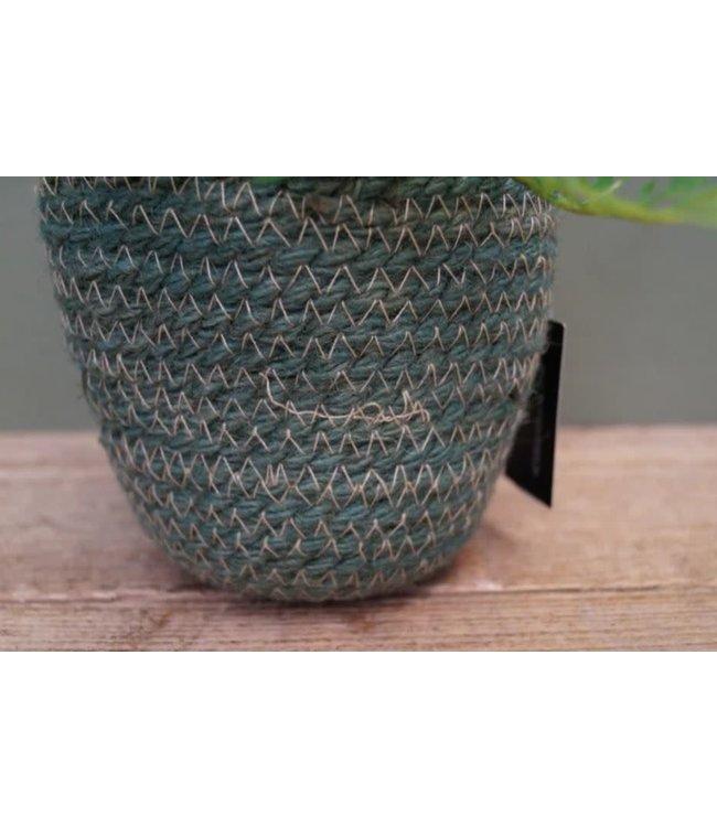 # J316 - Plantenzak - S - groen - 12 x 12 x 11 cm