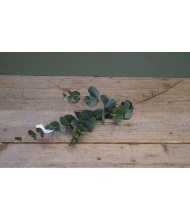 # W124- Eucalyptus Spray x4 w/31 lvs - 76 x 14 x 10 cm