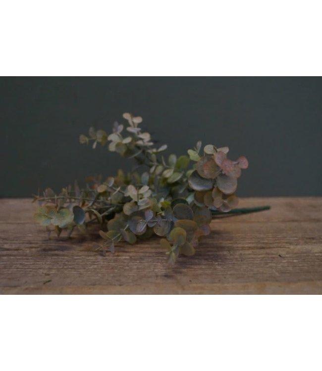 # I274 - Eucalyptus pick 33 cm