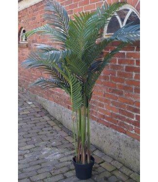 *J333 - Palm - imitatie/kunst - 112 x 112 x 165 cm - alleen afhalen/wordt niet verzonden