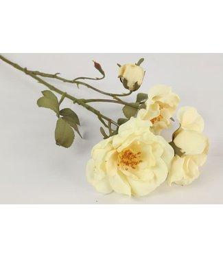 *rosa wit - 16 x 16 x 63 cm