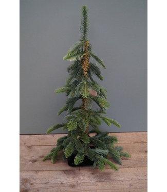 *I381 - Kerstboom imitatie - 60 cm