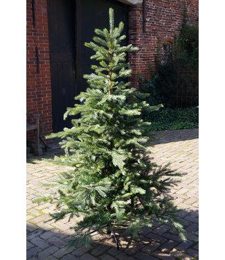 *Kerstboom - kunst - Grandis fir - 180 cm - groen