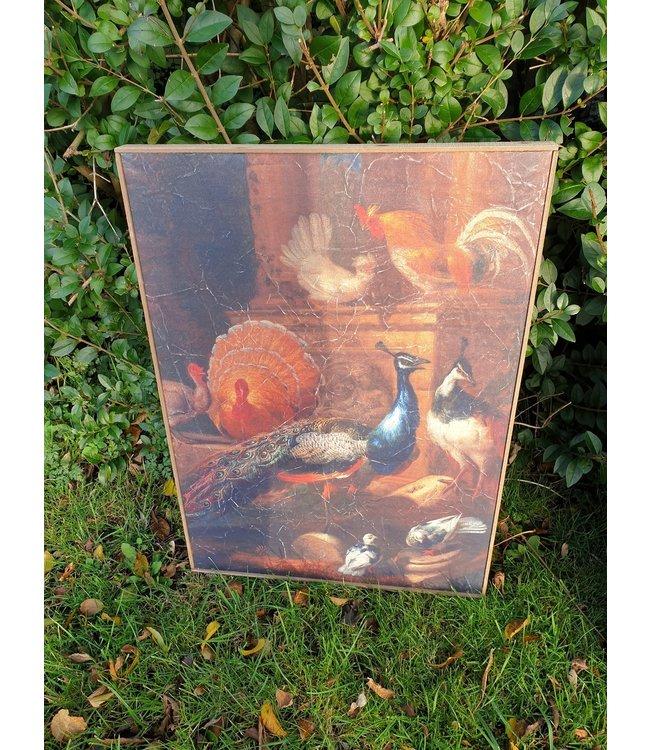 @ Muse pauw op doek in houten lijst - 51 x 71 cm - wordt niet verzonden/alleen afhalen