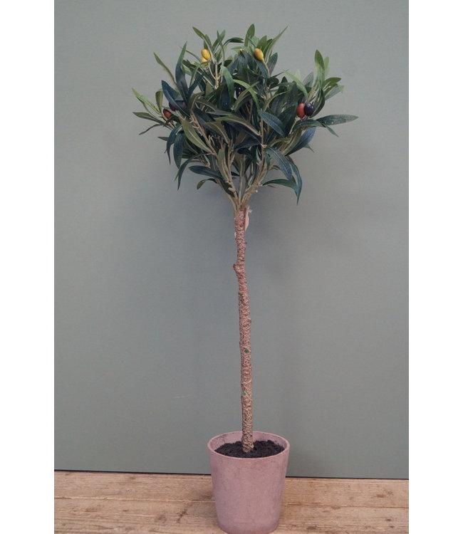 # Olijfboom - kunst - Olea europaea groen - L45B45H75CM