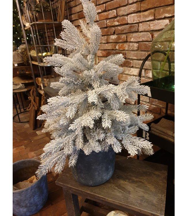 NT!!!  - J214 - Buiten/binnen kerstboom in pot-  75 cm