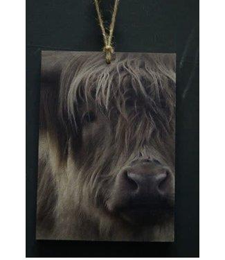 *i444 - Decobordje - hooglander - hout aan touw - 15 x 1 x 21 cm