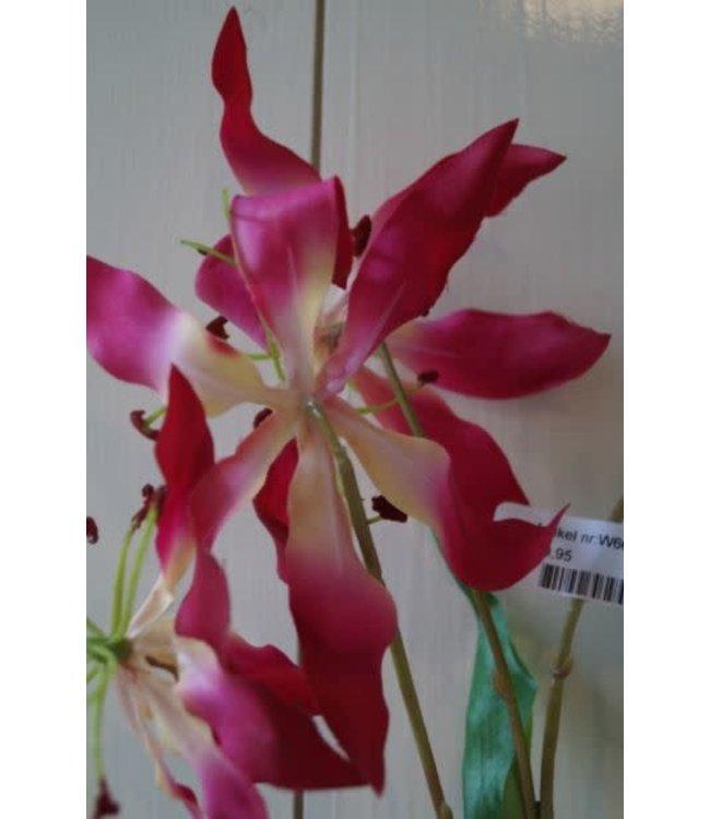 # W666 - Gloriosa - 95 x 10 x 8 cm