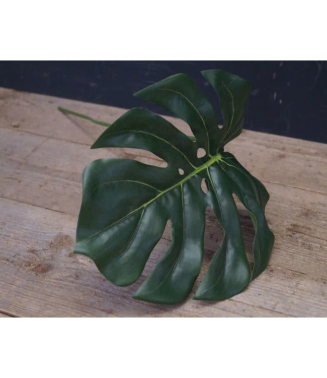 ## Q990 - Colocasia Leann groen - kunst - l73b26hcm
