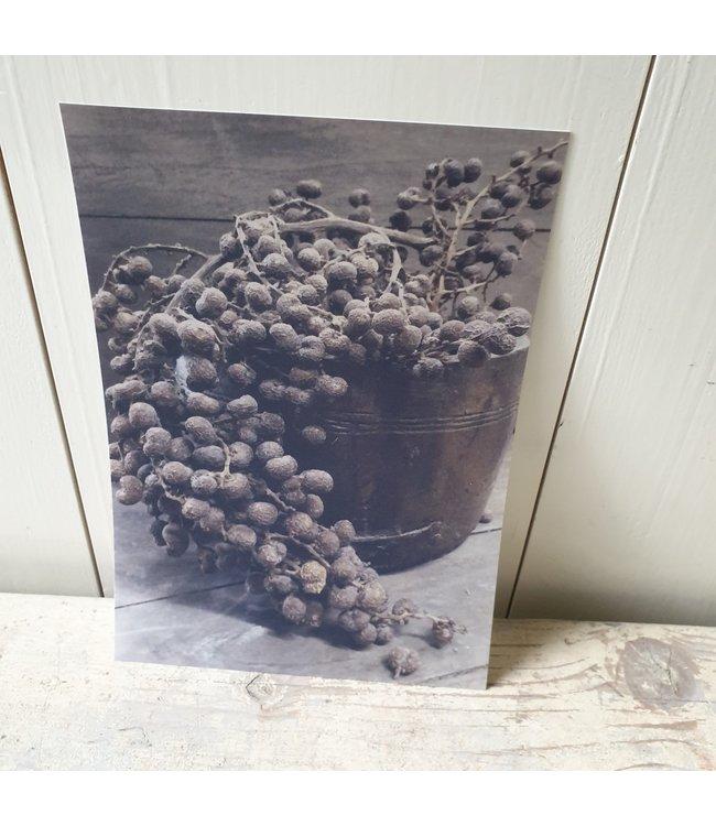 *I450 - kaart dadels- 15 x 21 cm