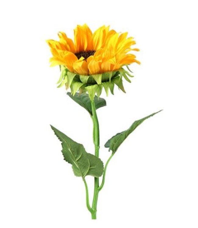 # W894 - helianthus annuus ilona l geel - kunst - 8 x 8 x 86,5 cm