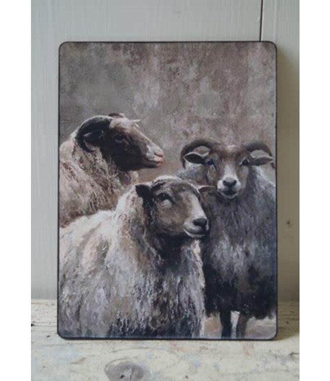 # E848 - Afbeelding 3 schapen - 14 x 19 cm