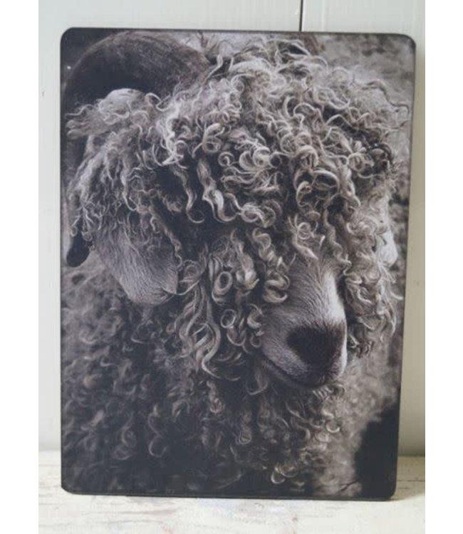 # W209 - Afbeelding schaap krullen - 14 x 19 cm