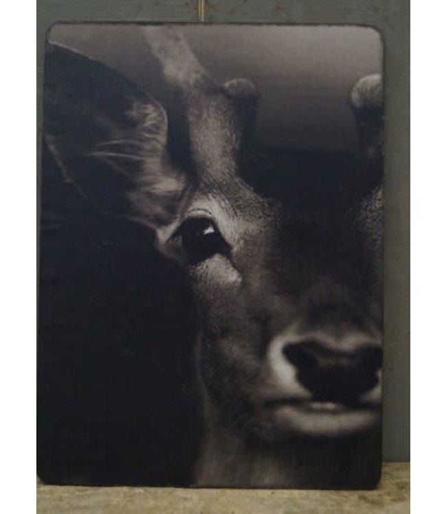# W813 - Afbeelding hert - 14 x 19 cm