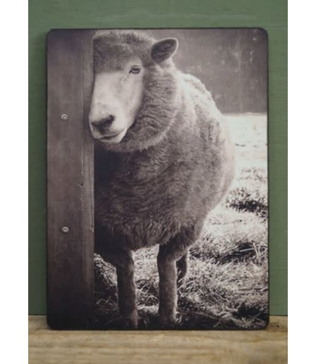 # J152 - Afbeelding schaap - 14 x 19 cm