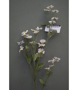 # Bee Daisy Spray 145 cm