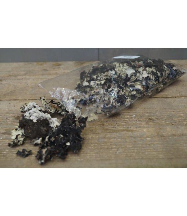 Z793 - Black mos - zakje 50 gram - 26 x 16 x 3 cm