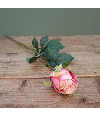 # Rosa roze - kunst - L8B8H70CM
