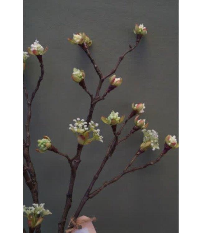 # Esdoorn fruit tak Quince  L wit - 110 x 22 x 4 cm
