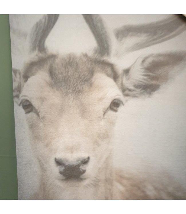 # J070 - Prent Hinde A4 - canvas - 24 x 30 cm