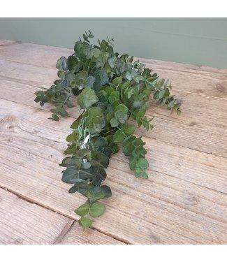 # Eucalyptus groen - 30 x 30 x 62 cm