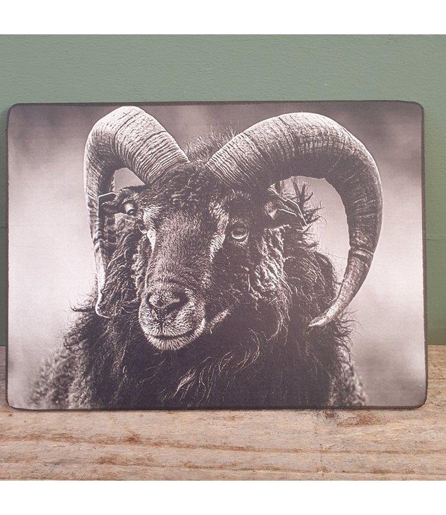 # Ram zwart wit afbeelding - 14 x 19 cm