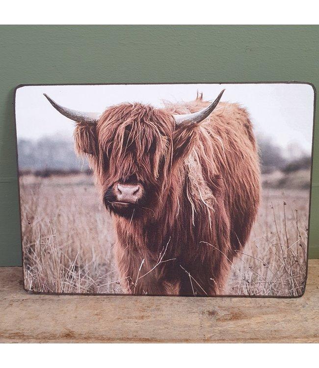 # Schotse hooglander - liggend - bruin - 19 x 14 cm