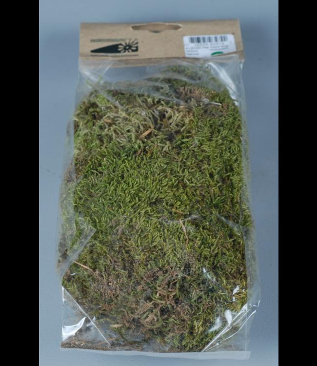 # Moss flat 50gr - Natural
