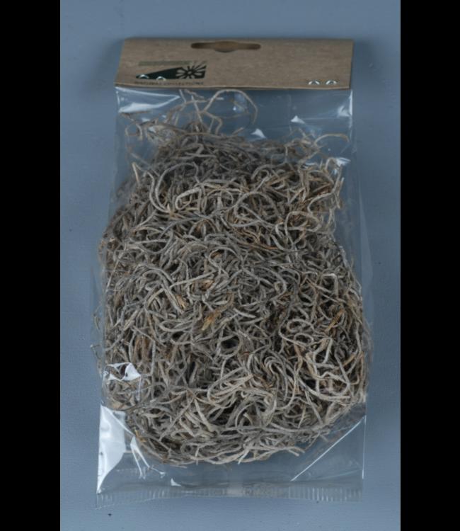 # Moss tillantia 30gr - Natural