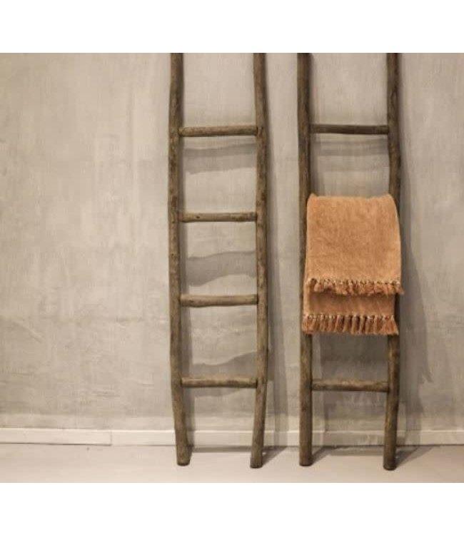 # E905 - Houten ladder - grey finsh - wordt niet verzonden/alleen afhalen - 40 x 6 x 140 cm - per stuk