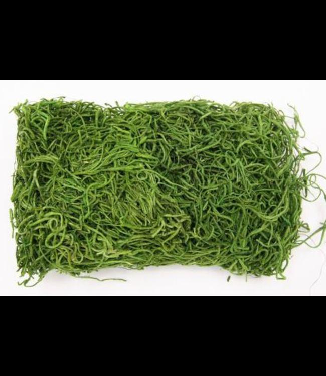 # Hobby tillandsia Moss - 30 gram  - green