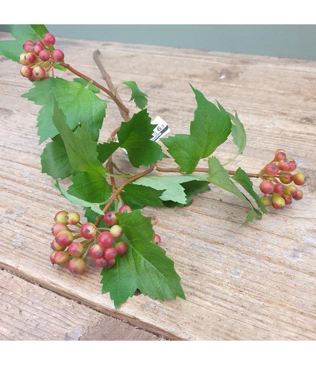 # Guelder Rose Berry- 25 x 12 x 58 cm