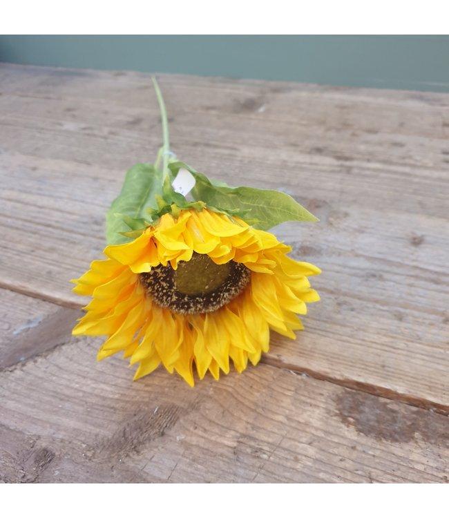 # w664 - single sunflower - 10 x 10 x 70 cm
