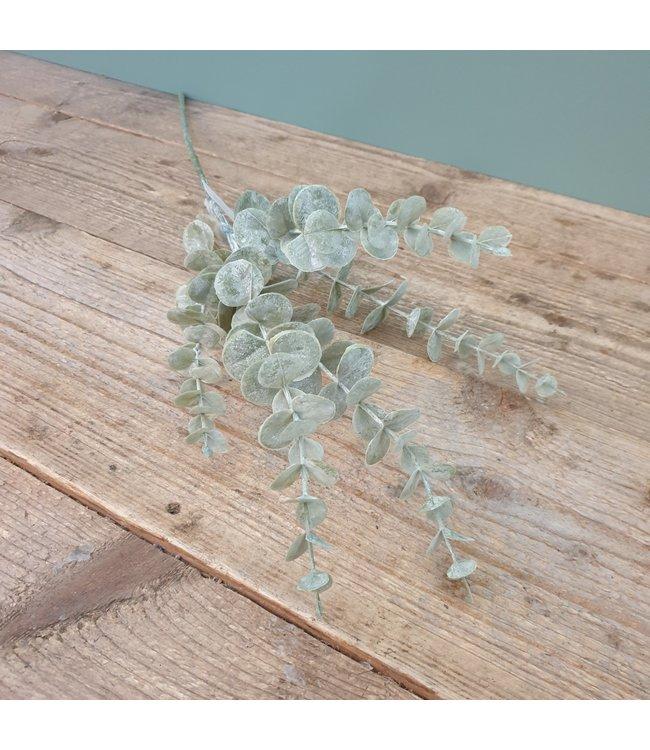 Brynxz Brynxz - Eukalypthuszweig - 73 cm - grau - kunst - eucalyptus
