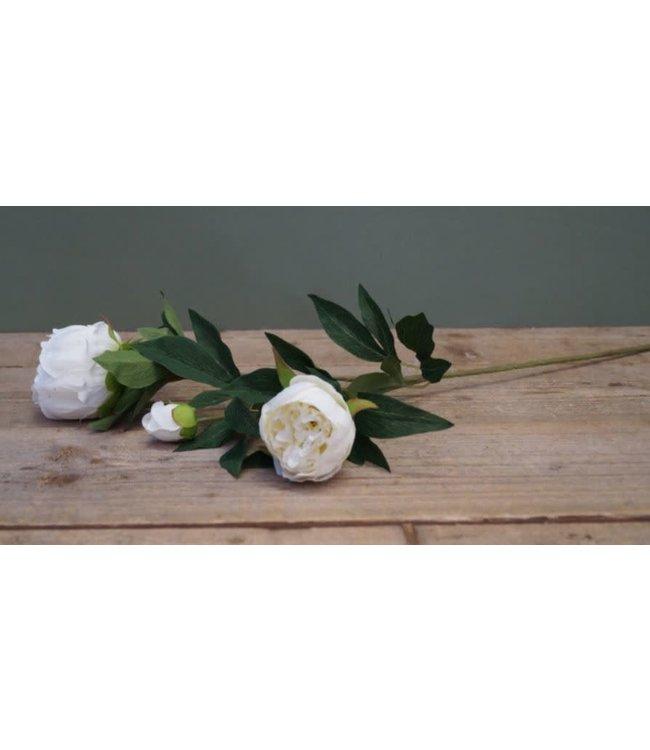 # A228 - pioenroos wit - tak met 3 bloemen - 72 cm